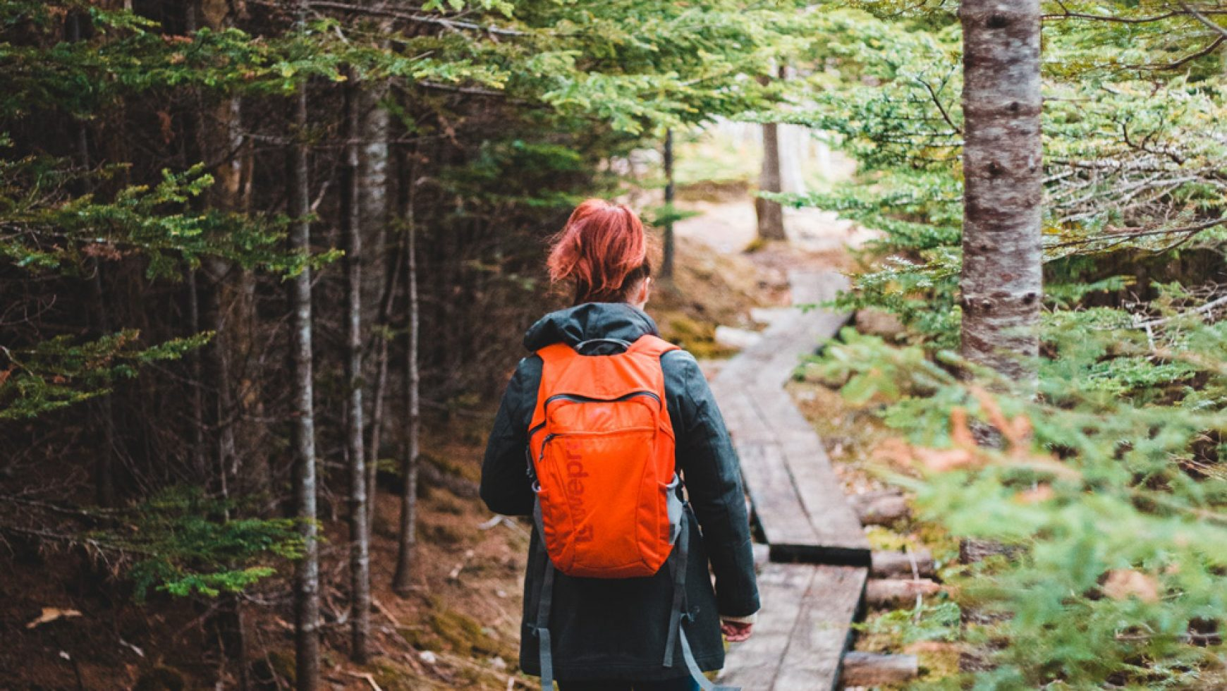Finding Happy: On A Lonely Trail